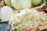 Лечение геморроя капустой